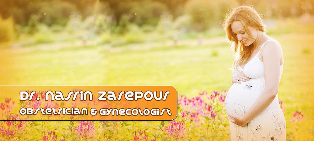zarepoor1-2